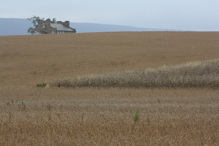 Hooper farmhouse atop a hill, cropland ready to harvest below it